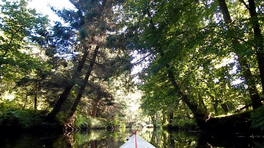 Heidefluss Böhme: Dorfmark - Fallingbostel